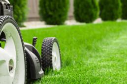 Tuinmachine en tuingereedschap huren